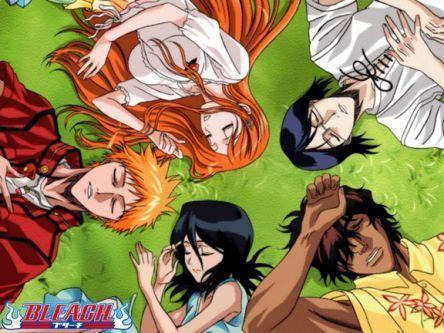 Ichigo, Orihime, Rukia, Chad, Ishida